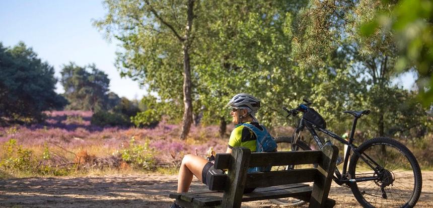 De Sallandse Heuvelrug is een paradijs voor mountainbikers.