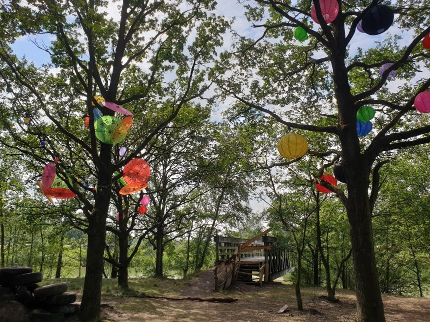 Parasolletjes in de bomen