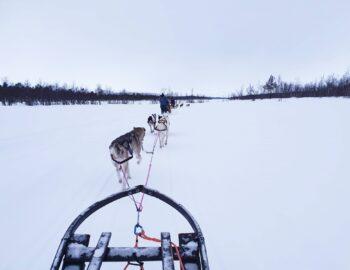 Sneeuwavontuur in Zweeds Lapland