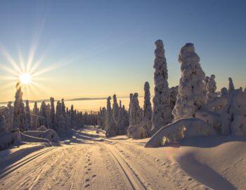 De mooiste winterse avonturen beleef je tijdens een vakantie in Fins Lapland
