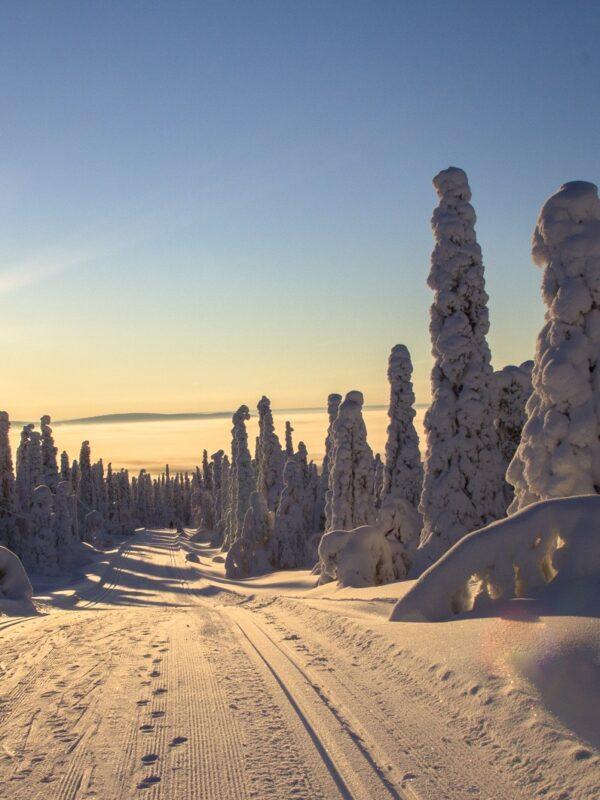 vakantie in Fins Lapland