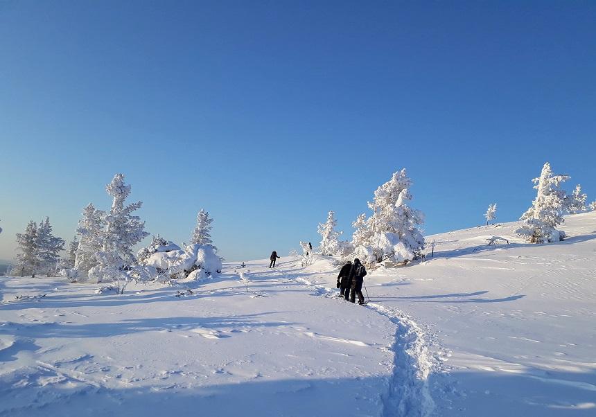 wandelen in Fins Lapland
