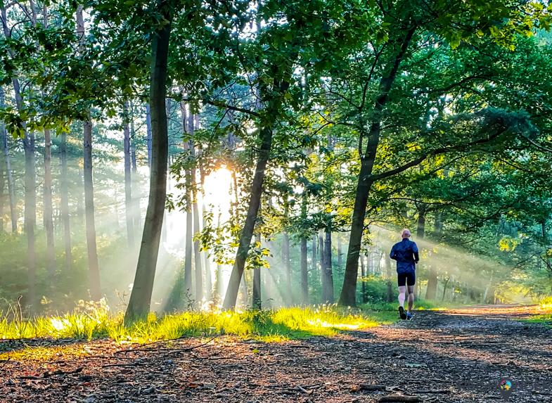Trailrunning Park Molenheide