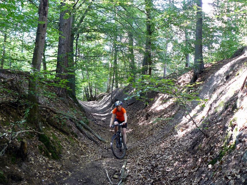 Mountainbiken in het Teutoburgerwald - bladerpad omlaag