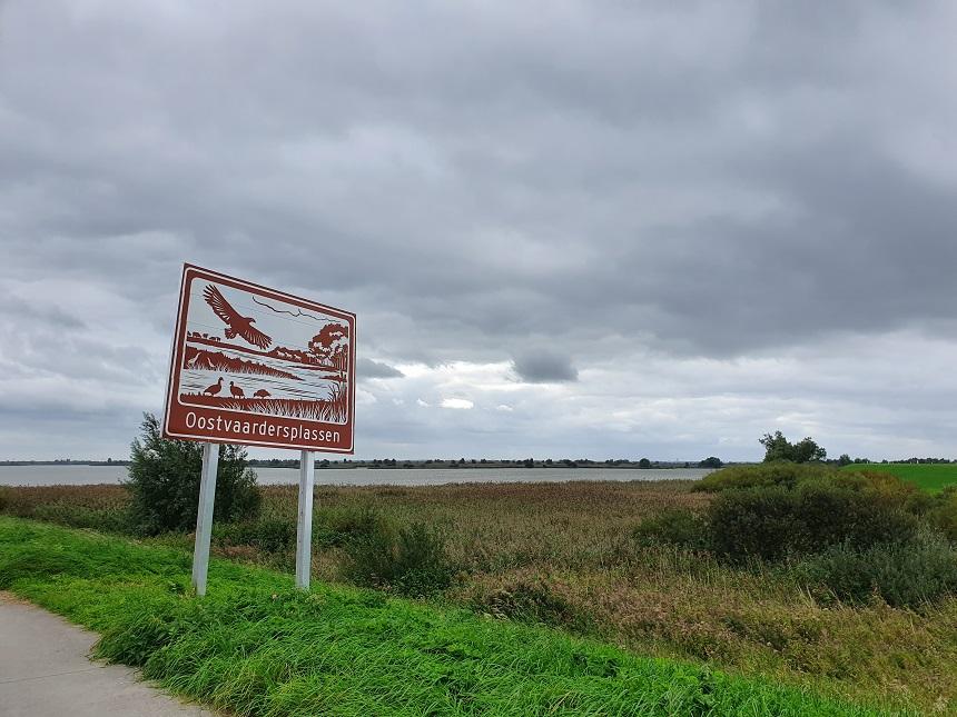 oostvaardersplassen oostvaardersdijk