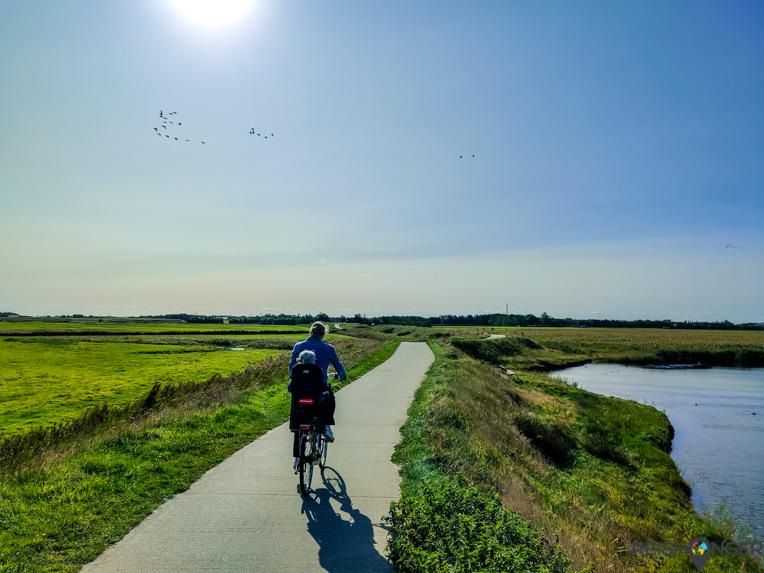 Texel fietsen