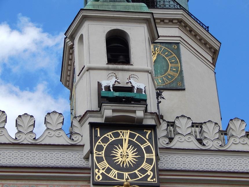 de 12 uur geiten op het stadhuis van Poznan