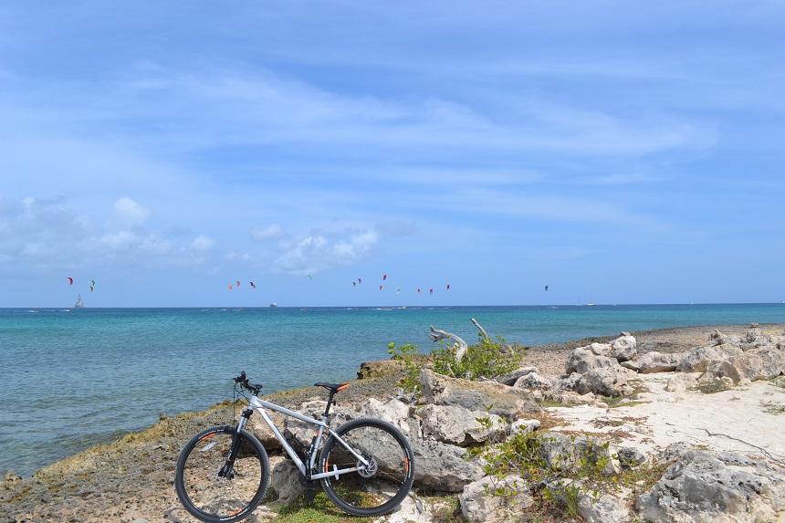 Aruba Hi-Winds