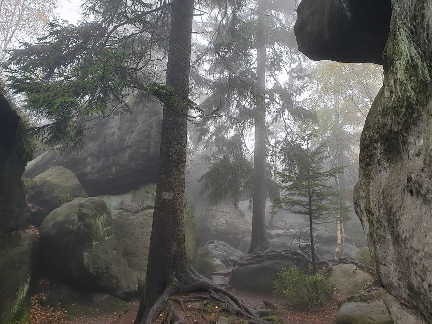 Dralen tussen de rotsen
