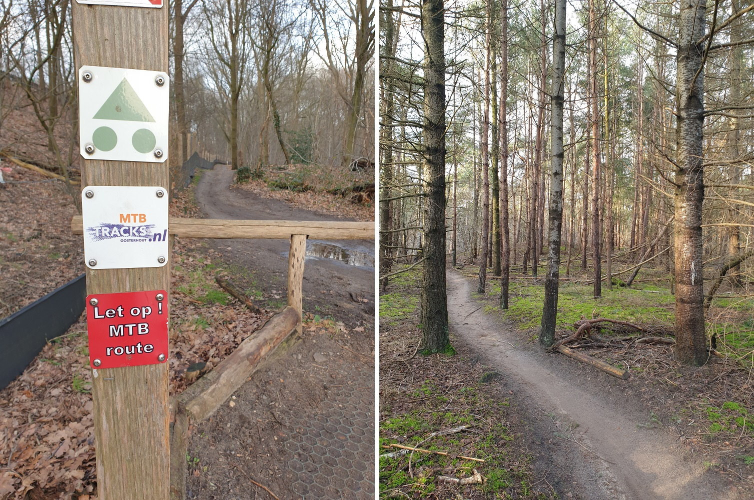 MTB route Dorst Oosterhout