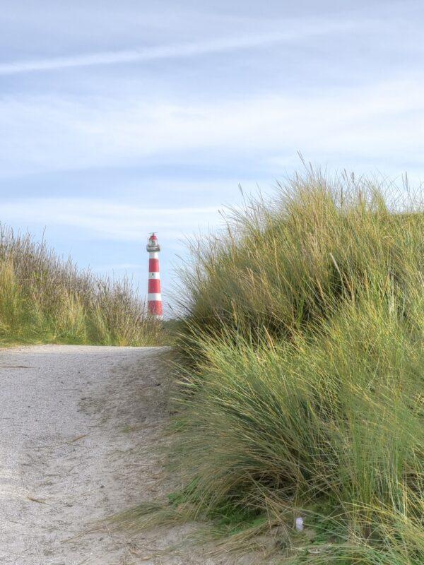 Ameland of Texel