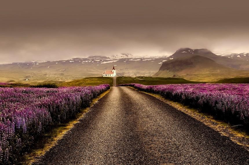 Digitaal corona certificaat ook geldig voor IJsland