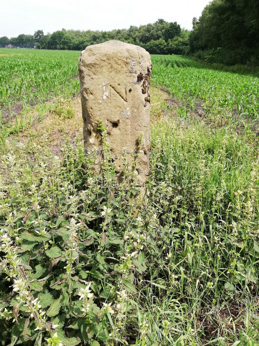 Grenspaal in het veld bij De Lethe