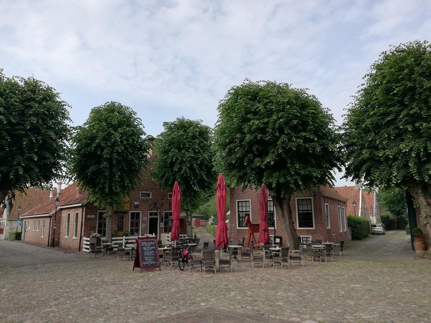 Oude lindebomen op het centrale plein in Bourtange