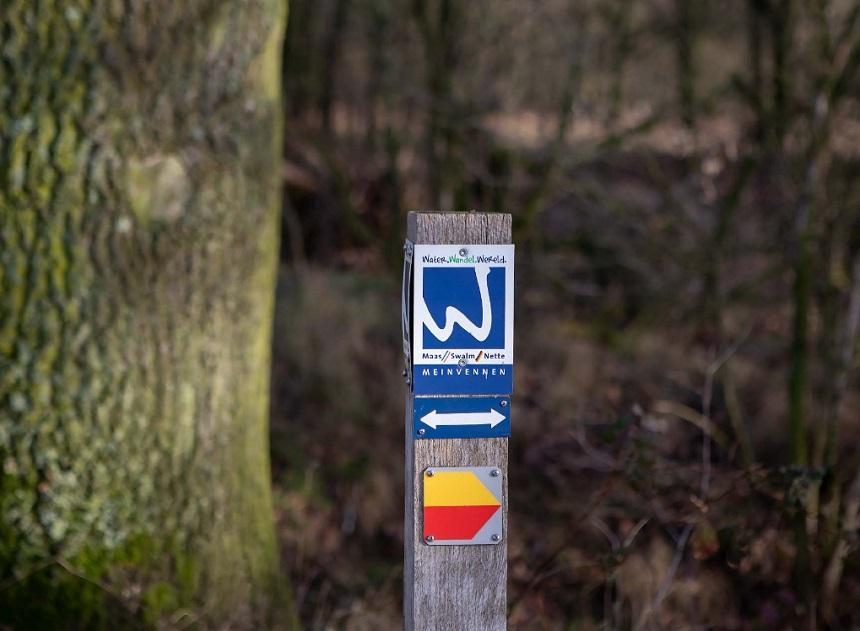 De Meinvennenroute, een van de mooiste wandelroutes in De Meinweg - natuurpark Maas-Swalm-Nette