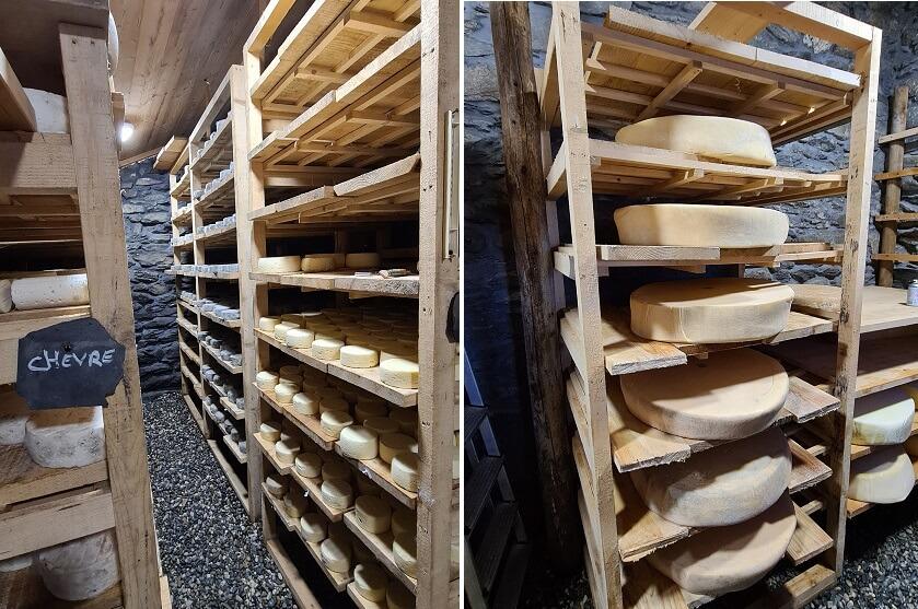 De professionele kaasmakerij waar geitrenkaas wordt gemaakt