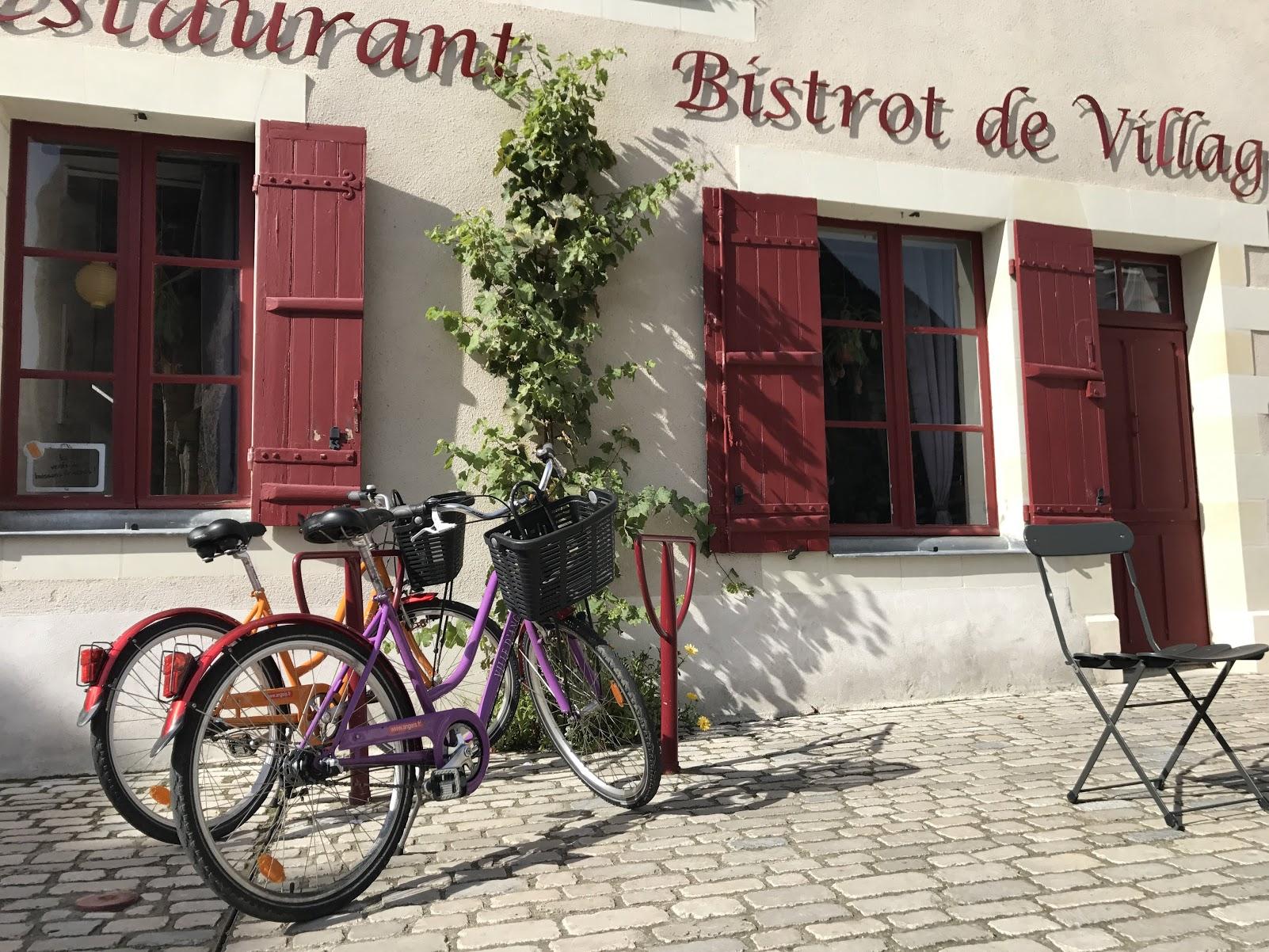 vakantie in het Loiredal fietsen door de wijngaarden