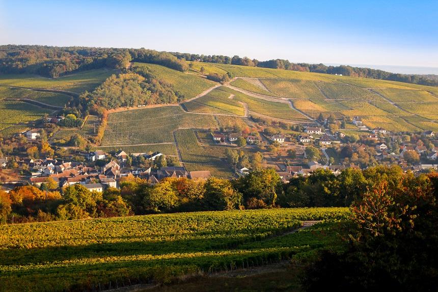 Vignoble de Sancerre : vue depuis l'hôtel Panoramic - Photo credits: Vautier M