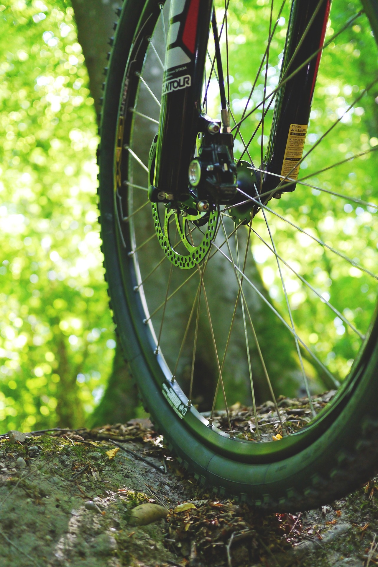 mountainbike cleaning
