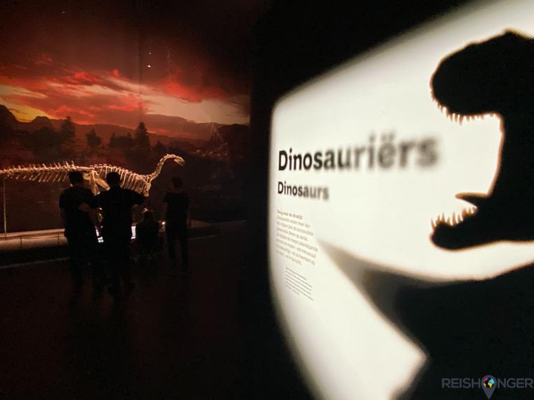 Dinosauriërs in Naturalis