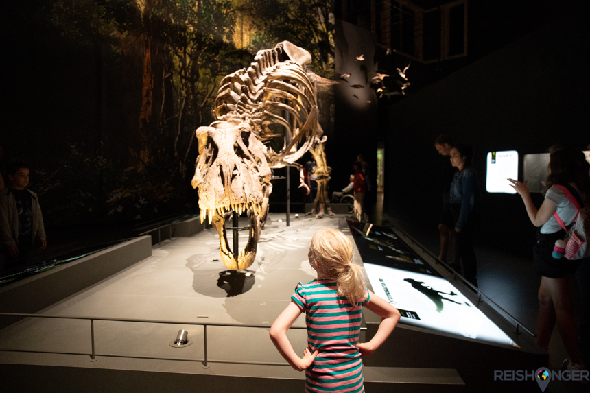 T-rex Naturalis
