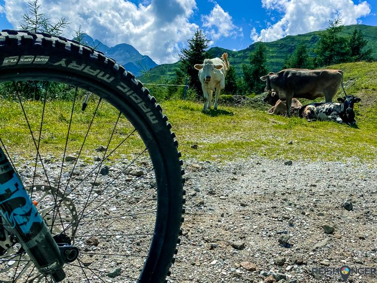 e-mountainbike Stubai