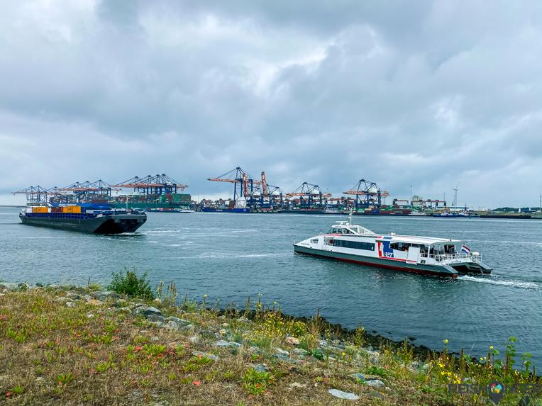 Fast Ferry Maasvlakte