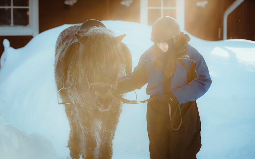 paardrijden rovaniemi