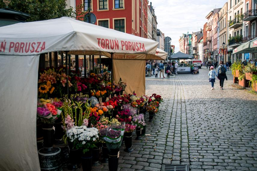Koejavië-Pommeren Polen Torun Copernicus plein