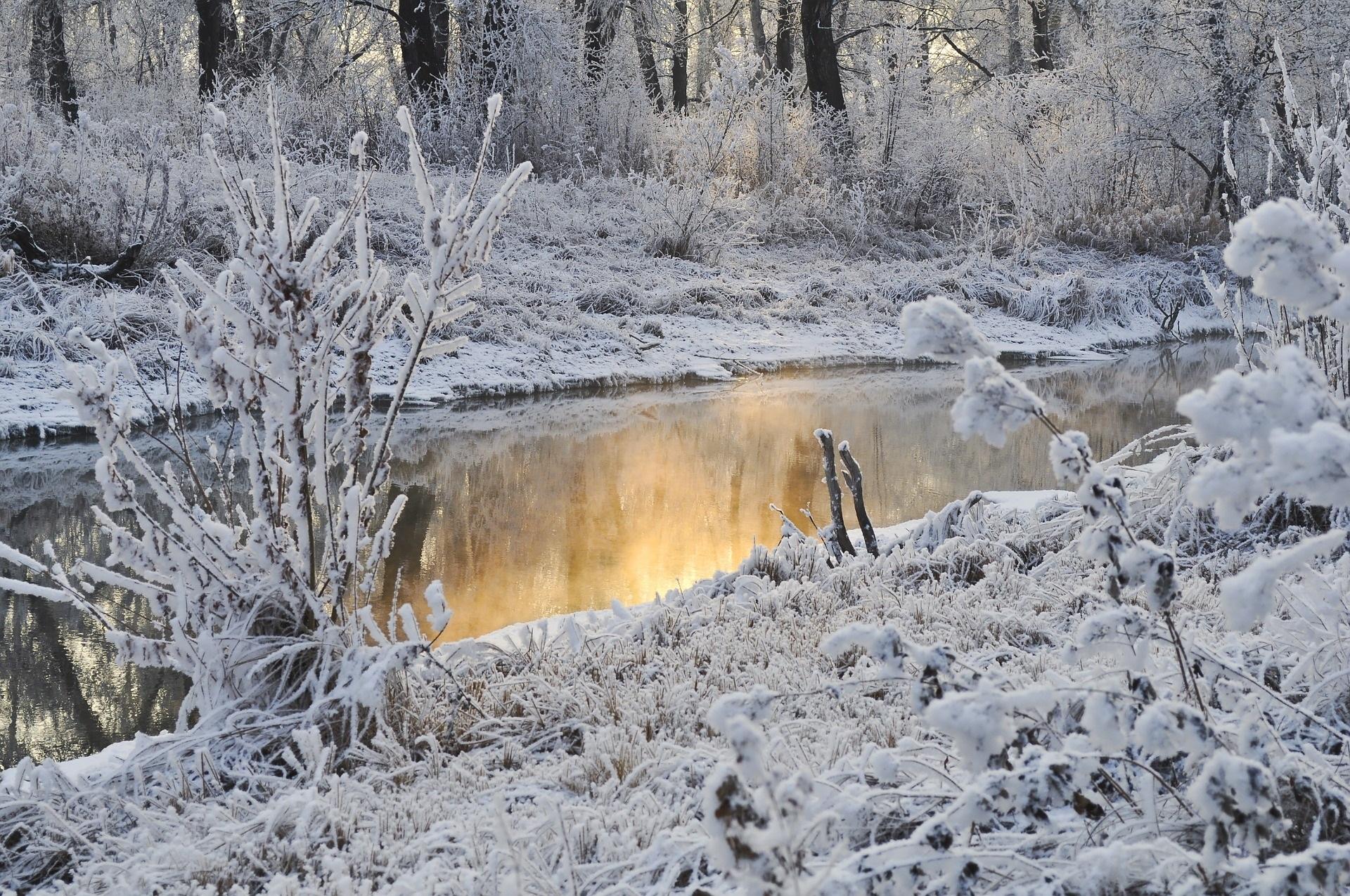 fotografie in de winter